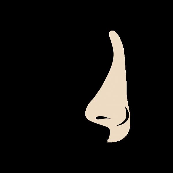 Burun_Cesitleri_genis_burun